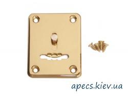 Накладка сувальдная APECS DP-S-01-G-shutter (со шторкой)